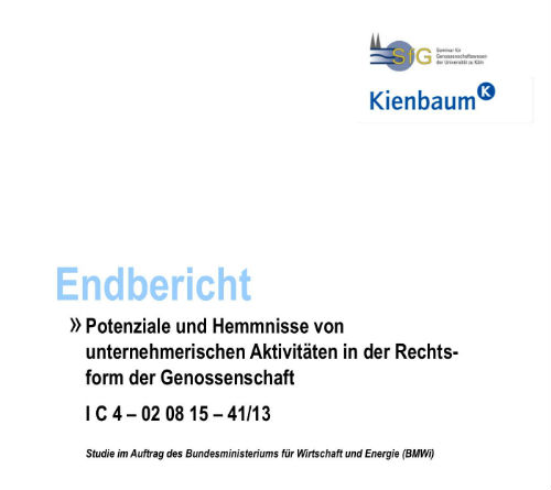 BMWi-Studie-Genossenschaft